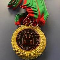 Bild vergrößern:Als Erinnerung für ein tollen Tag, hatten die Kinder eine Medaille - Das Magdeburger Recht - bekommen.